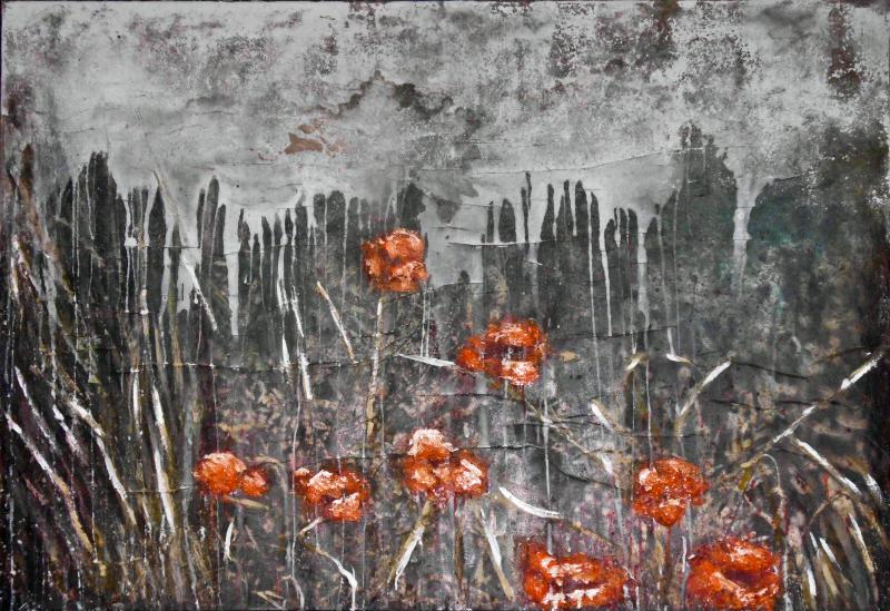 Mystery of Poppies